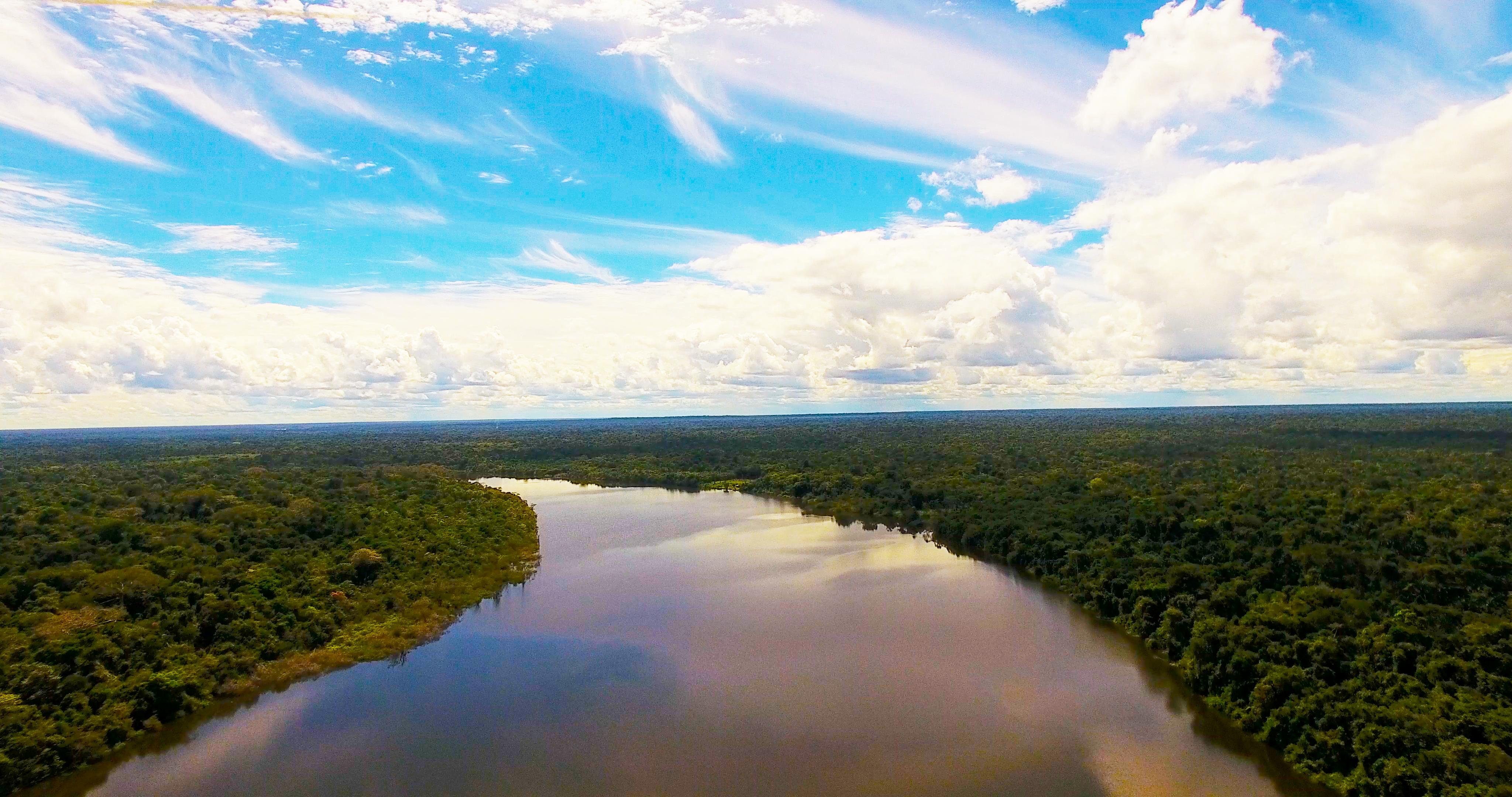 Nace la Mesa Forestal del Meta para trabajar en el uso sostenible de los bosques