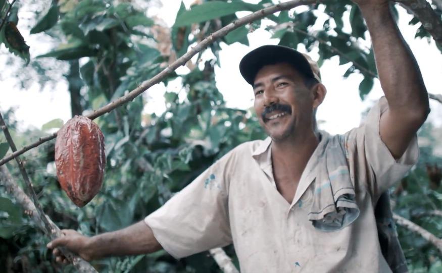 Brotes verdes en la Amazonía: la historia de Don Albino