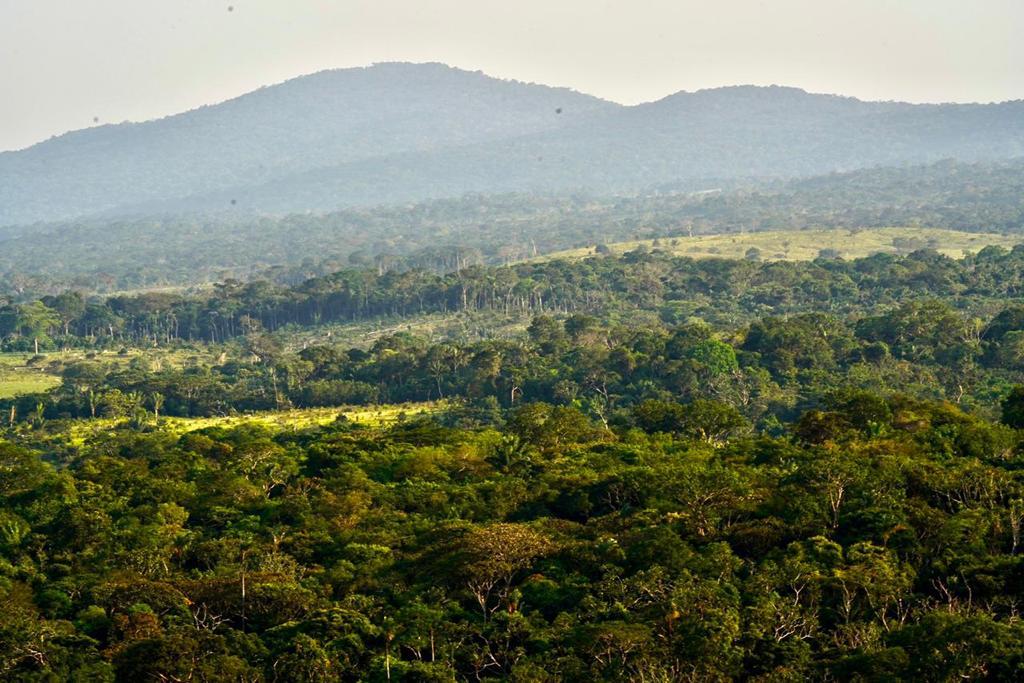 Una alianza para apoyar proyectos productivos sostenibles en la Amazonía