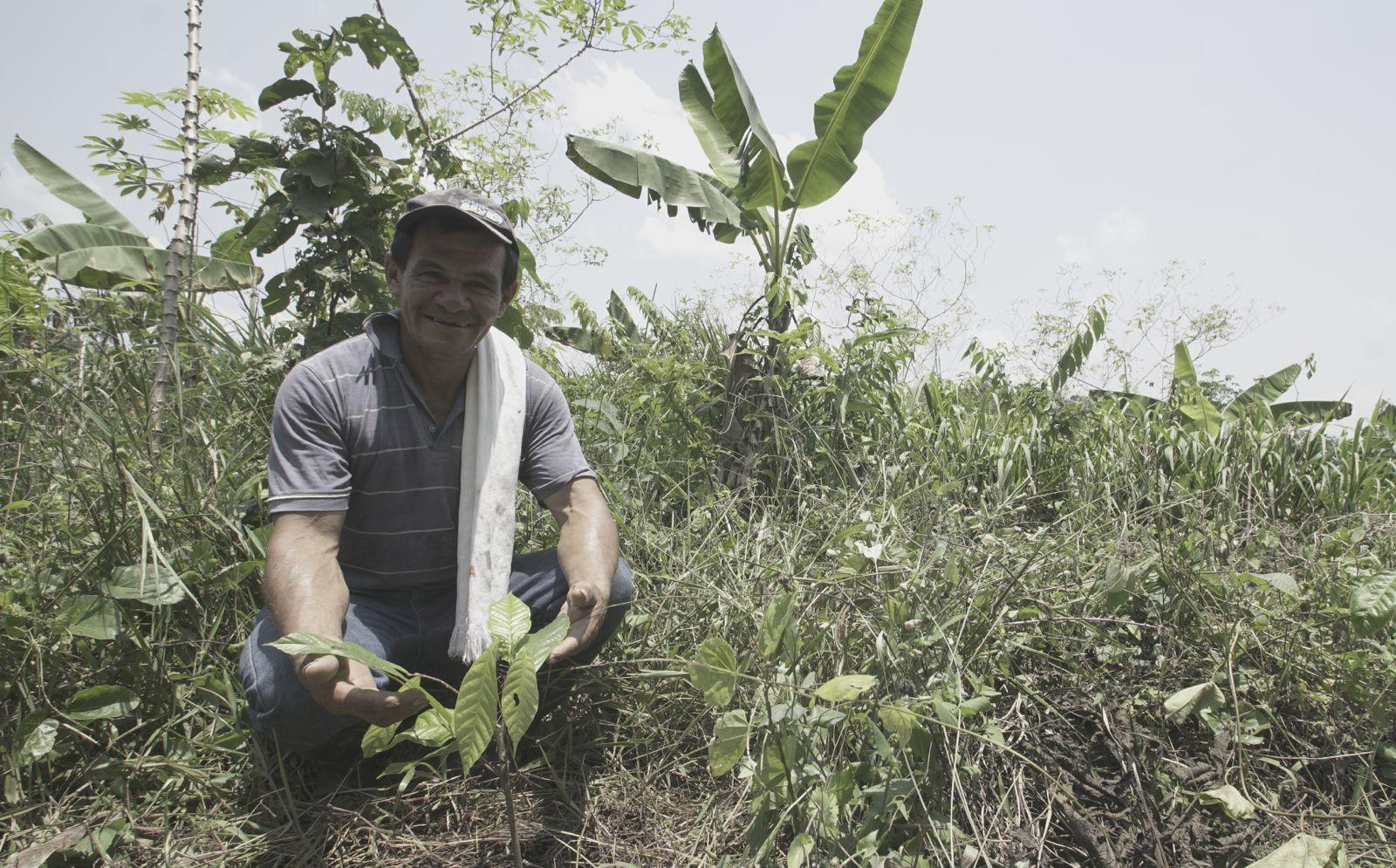 Energización rural, una apuesta al desarrollo sostenible de la amazonia colombiana