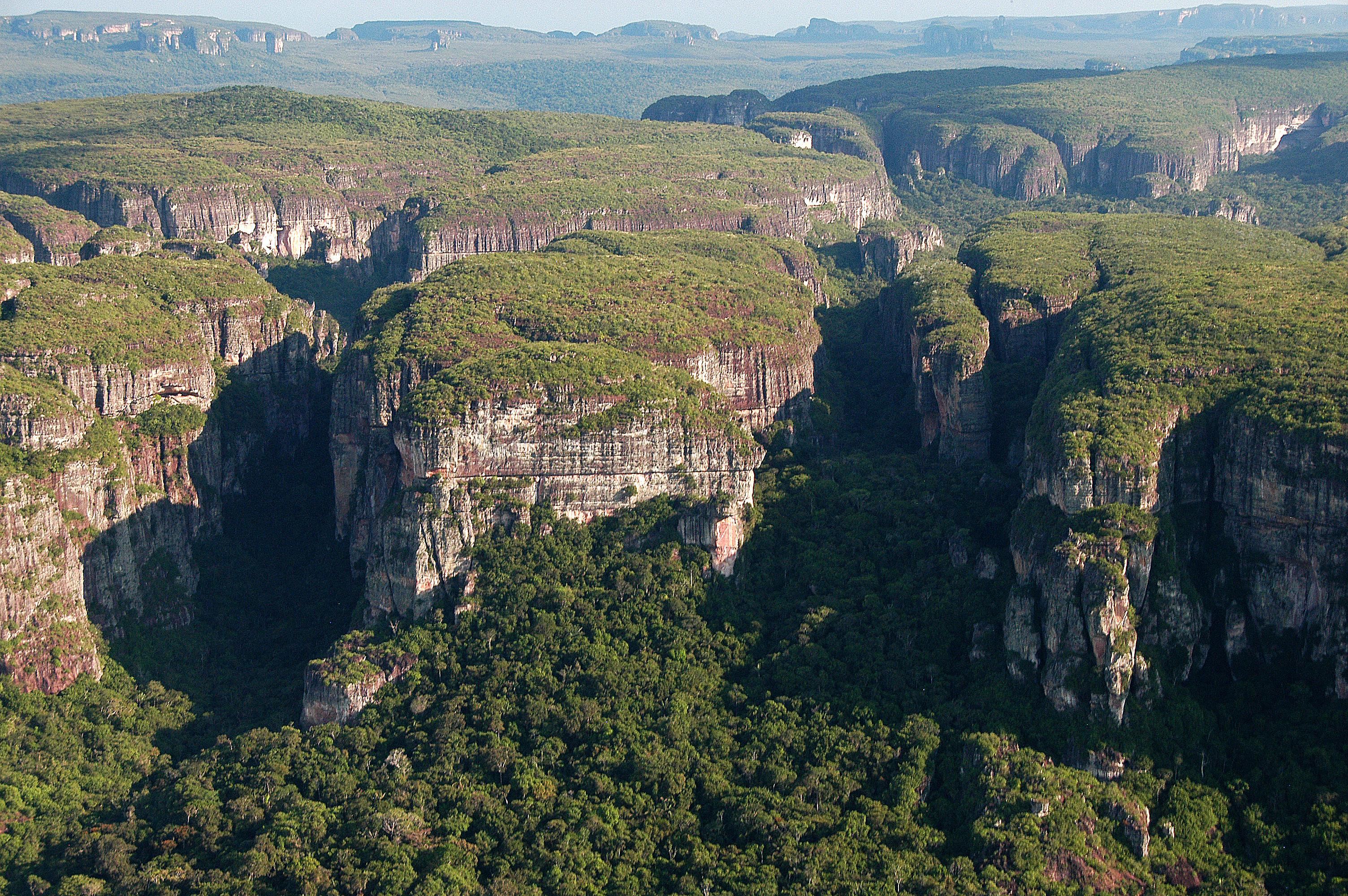 Cinco claves para entender la deforestación en la Amazonía colombiana